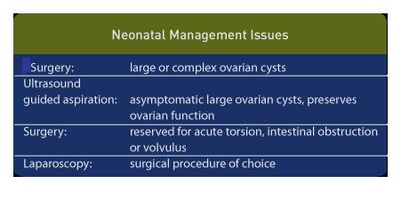 ovarian mass