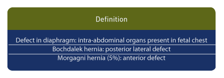 A congenital diaphragmatic hernia (CDH) results from defects in the diaphragm