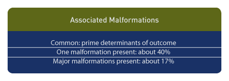 Outcome of CDH is determined by associated malformations