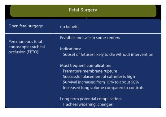open fetal surgery to repiar Congenital Diaphragmatic Hernia