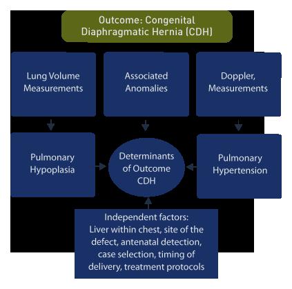 pulmonary vascular changes leading to pulmonary hypertension