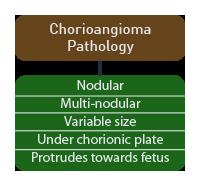 incidental findings on pathologic examination of the placenta