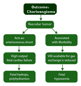 Larger chorioangiomas can result in poor fetal outcome