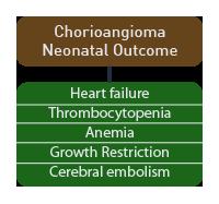 Chorioangioma's Neonatal Outcome