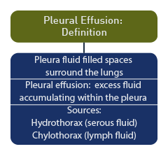 Definition. The Pleura Are The Fluid Filled Spaces That Surround The Lungs  And Pleural Effusion Is Excess Fluid Which Accumulates In These Spaces.