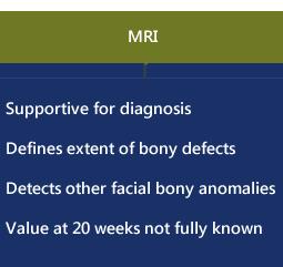 fetal facial clefts MRI