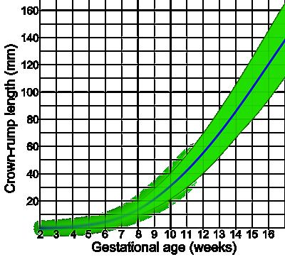 Crown rump length by gestational age